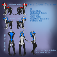 Fate Cross Trinity Upgraded Reference by Bringmetohell