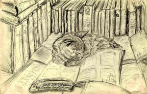 Kitty dreams of books too by Cidiene
