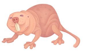Naked Mole Rat by WonderDookie