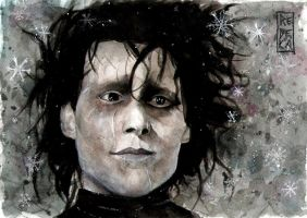 Snowflakes and scars: Edward Scissorhands by Shinigami-uta