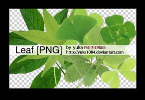 leaf png 2 by yuka1084