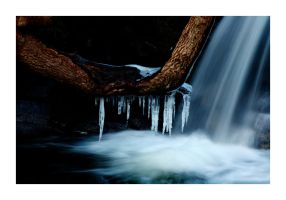 A Bit of Winter by Wilce