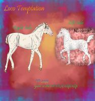 3493 Loco Temptation- old ref by SweetStreamStables
