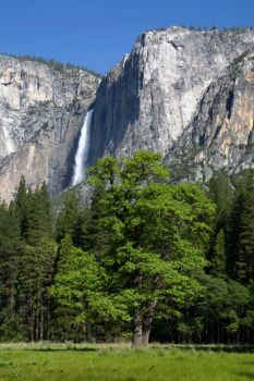 Yosemite Falls 2 by arches123
