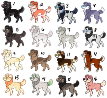 25 Point Mystery Dog Adopts 4 - CLOSED by Railguns