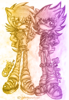 PC: TWO HEDGIES by Videogamescool