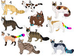 # Offer to adopt - Cat-Adoptables - OPEN by PinkPlushChicken