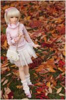 Just a little autumn walk I by sherimi
