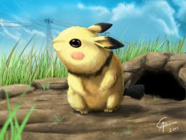 Real Pichu by CamusAltamirano