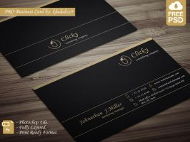 PRO Business Card by khaledzz9