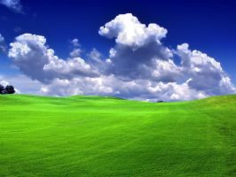 Green grass and blue sky by s1lv3r-bg