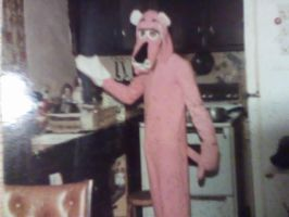 Pink Panther by MasterZenTaoist