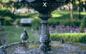 Toronto Fountain With Pigeons by legionxstudios