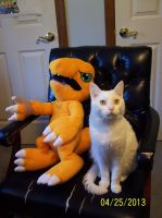 My Agumon And Frosty by Destiny-The-Hedgimon