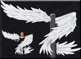 Wrap-Around Wings - White by Thy-Darkest-Hour