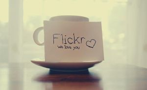 flickr we love you by BeciAnne