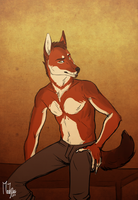 Ethiopian wolf by the-MadDog