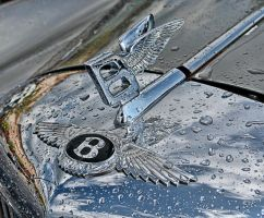 1961 Bently hood ornament by artbylink