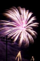 Fireworks 21 - The Fairy Queen by robertllynch