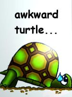 Awkward turtle by penguinluv4ever