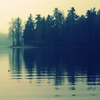 Ripple. by AboutTheBirds