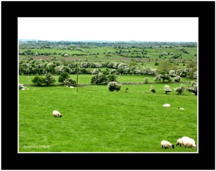 Irish Country Side by fluffyvolkswagen