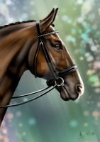 Horse Portrait by AliceYung