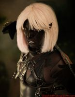 Drow Preview 1 by Mistress-Zelda