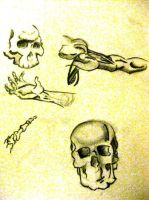 Skull Hand And Muscle Studies by Nino666