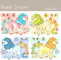 adoptable designs TAKEN by PRlNCE