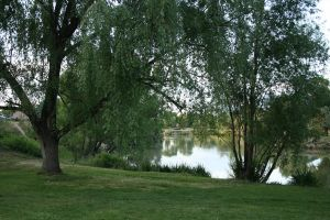Lake scene 1 by AmbiePetals-Stock