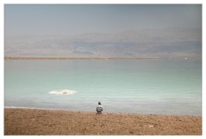 ...Not so... DEAD Sea by aniutekchomik
