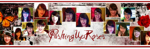 PushingUpRoses Banner 2.0 by pinkrangerwannabe