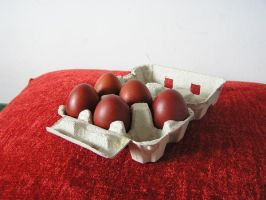 eggs by Caltha-stock