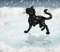 Hollyleaf Believes by mmoollyy10