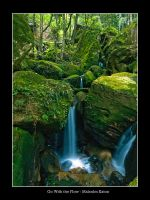 Go With the Flow Falls by FireflyPhotosAust