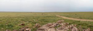 Serengeti panorama 360 by Majnouna