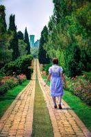 The yellow brick road by daguerreoty-pe