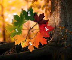 Autumn Leaves Clock for xwidget by jimking