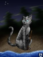 Jayfeather by leaderofmoonclan
