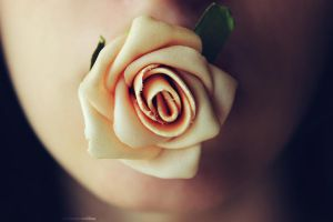 Rose thorns. by HQheart