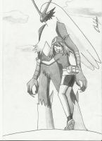 May and Blaziken by Krizeii