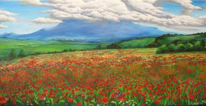 Poppy field by Kaitana