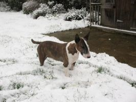 Phoebe In The Snow by McNish95