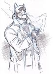 BLACKSAD by Wieringo