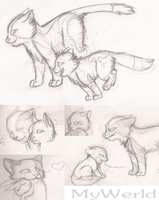 Duckpaw + Swiftstep Sketches by MyWerld