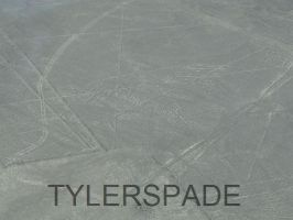 Nazca lines: The Condor by Tylerspade