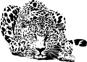 Crouched Leopard by dottedW