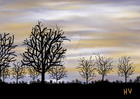 LANDSCAPE. 2012. by HenryValdROCKS