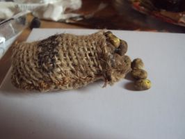 potatoes in sack by Pagan-Child